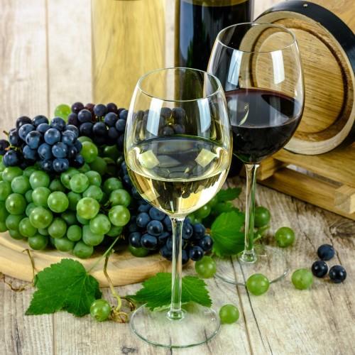 wine-tasting-croatia